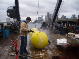 Zach cleaning the buoy needed for the site
